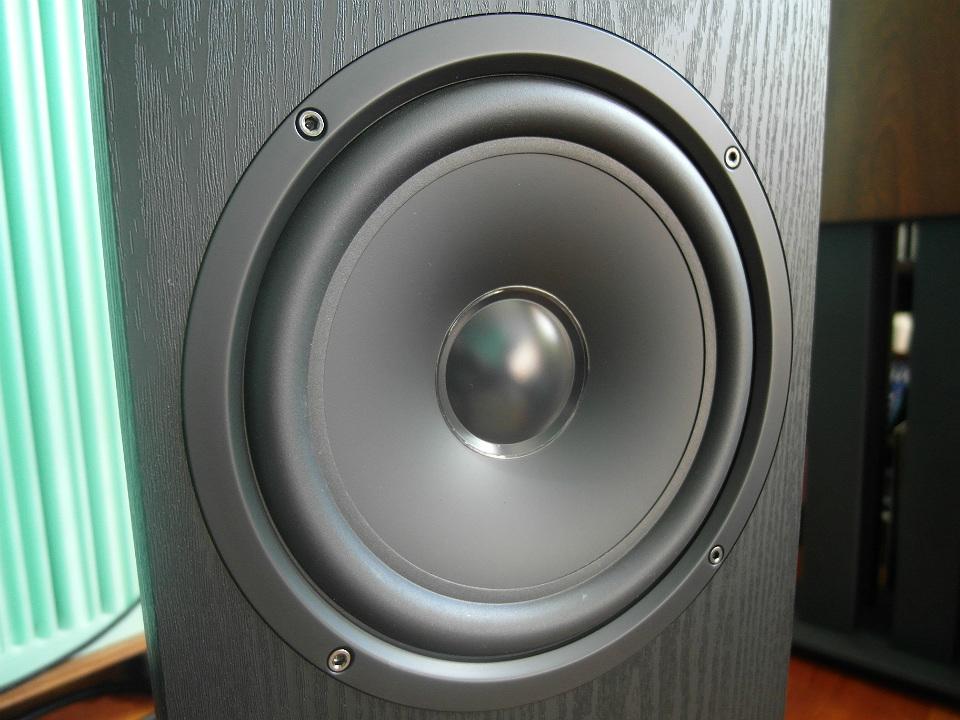 Głośnik basowy jest także polimerowy. Wszystkie są produkcji Polk Audio, wykonano je w technologii Dynamic Balance