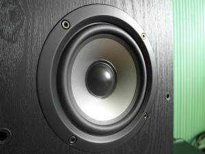 Głośnik średniotonowy to podwójnie laminowany przetwornik polimerowo-mikowy