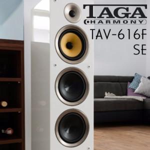 wstereo_TAGA_tav616fse (2)