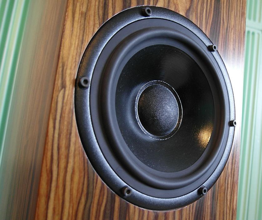 Dwa głośniki (niskośredniotonowy i niskotonowy) też pochodzą od Seasa
