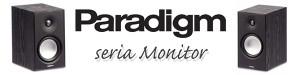 wstereo_PARADIGM_monitor