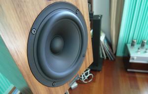 Głośnik nisko-średniotonowy