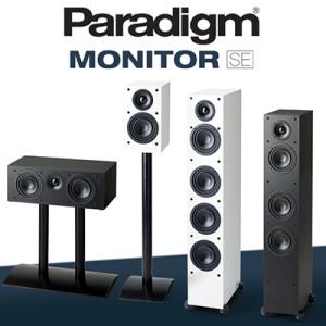 wstereo_PARADIGM_monitorSE