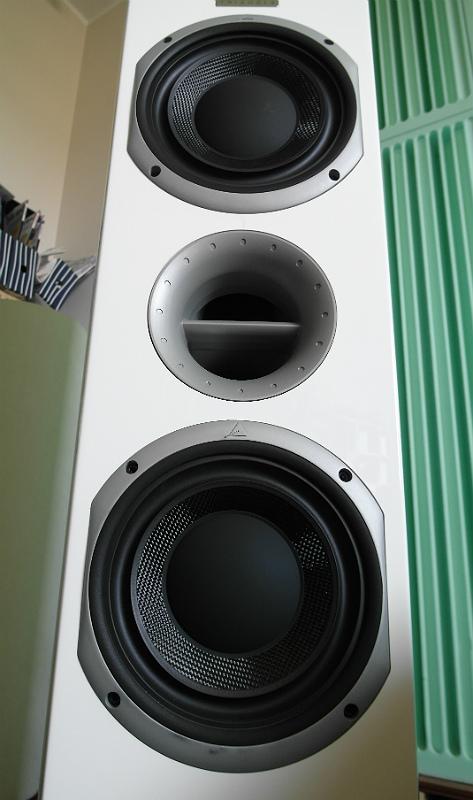 Głośniki basowe wykonano z plecionki w włókna szklanego i celulozy