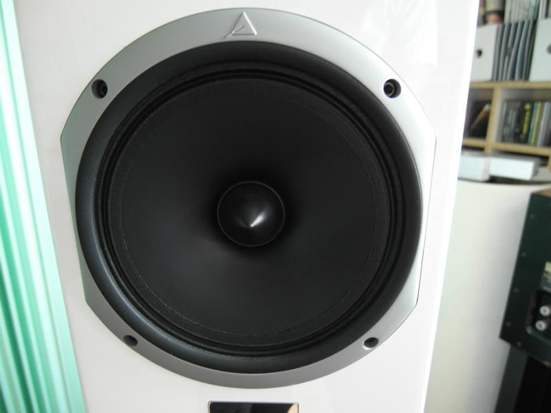 Głośnik średniotonowy wykonano z celulozy