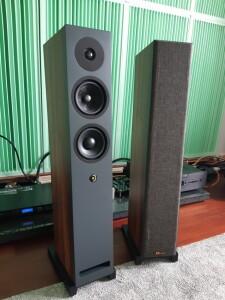 Davis Acoustics Krypton 6 - test. Kolumny są naprawdę filigranowe (fot. wstereo.pl)