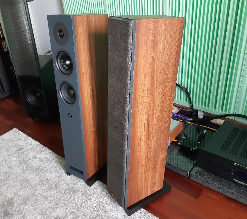 Davis Acoustics Krypton 6 - test. Frontowa ścianka wyróżnia się malowaniem (fot. wstereo.pl)
